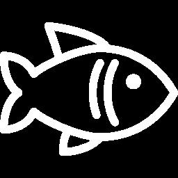 pescado cruzvalent